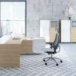 Trevix private office design