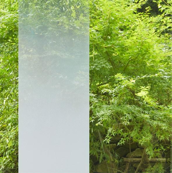 DSG Glass 4